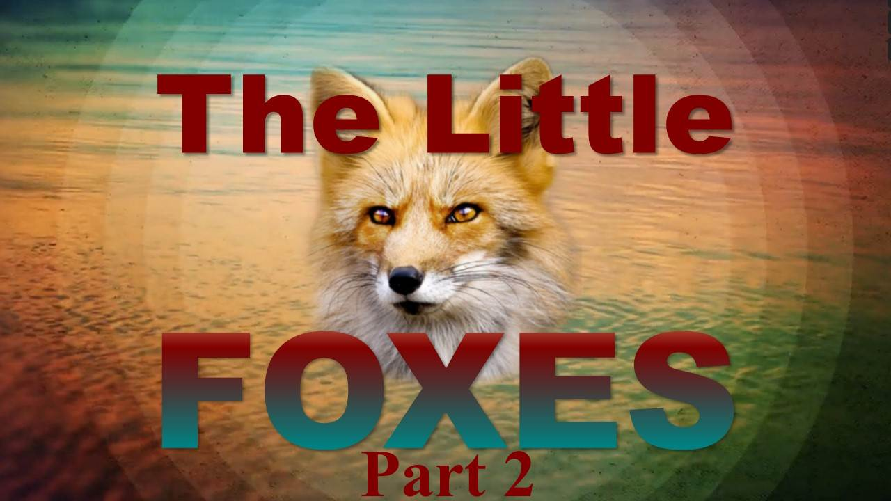 The Little Foxes – Part 2
